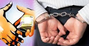 राजस्थान/जयपुर:रिश्वत लेते हुए नवोदय विद्यालय के प्राचार्य सहित दो लोग गिरफ्तार