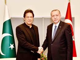 तुर्की ने फिर 40 पाकिस्तानियों को देश से निकाला