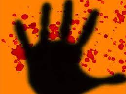 उदयपुर: नशे में धूत पिता ने ले ली पुत्र की जान, जानें